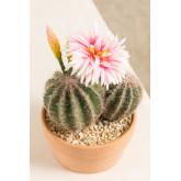 Künstlicher Kaktus mit Rebutia-Blumen, Miniaturansicht 3