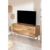 Meuble TV en bois avec porte Absy, image miniature 1