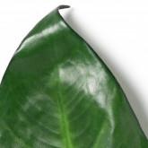 Feuilles Ilha, image miniature 4