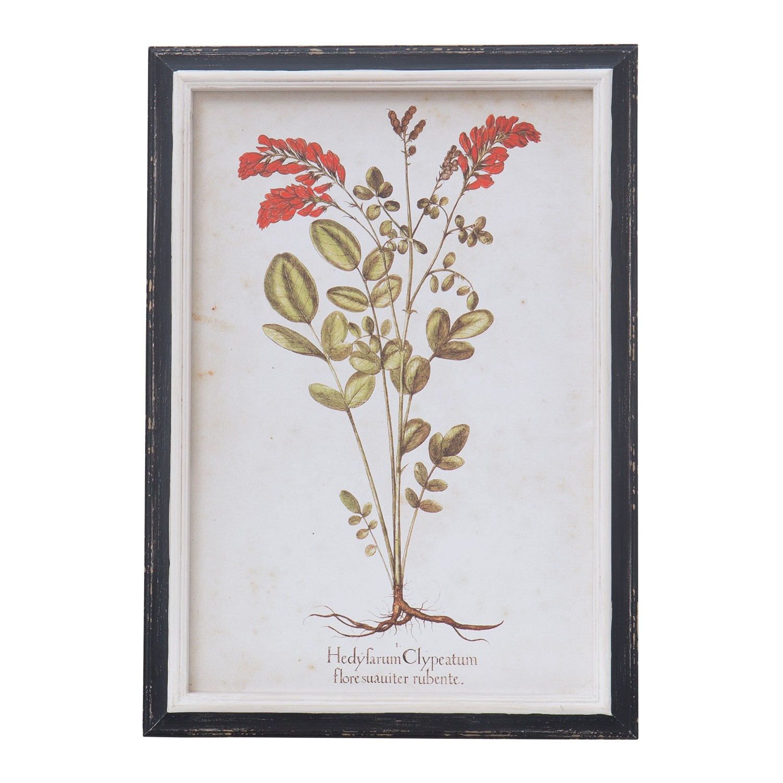 Cuadros Herb