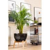 Plant Pot Thim L, thumbnail image 1