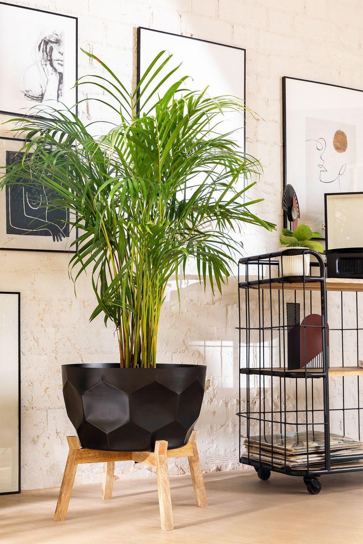 Plant Pot Thim L, gallery image 1