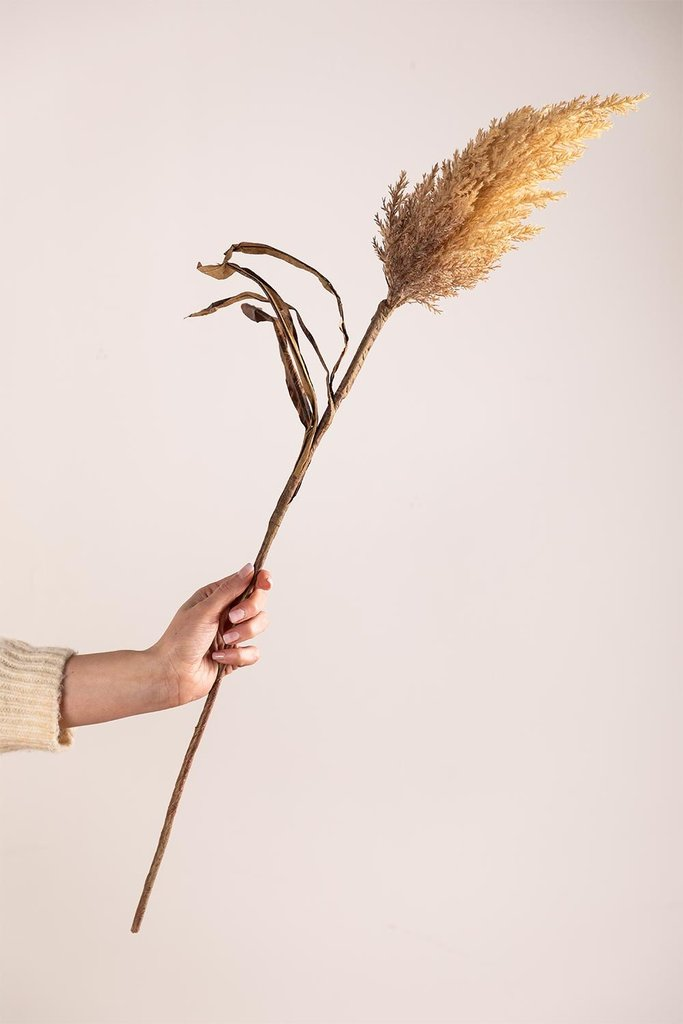 Pampas Cane Stem Artificial Branch, gallery image 1