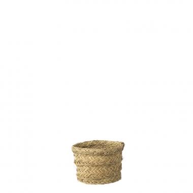 Vaso Pot