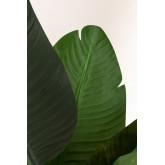 Pianta artificiale decorativa Bananera, immagine in miniatura 2