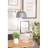 Claudi plafondlamp, miniatuur afbeelding 1