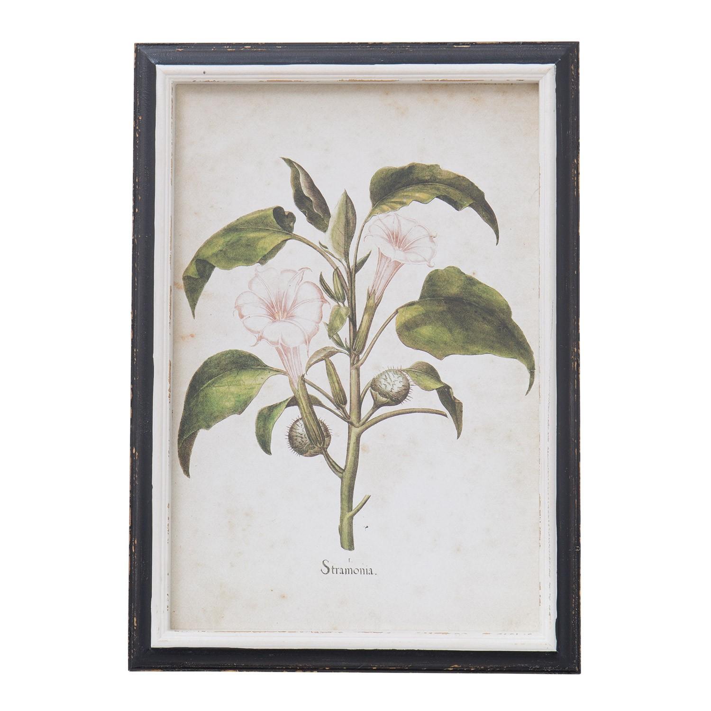 Quadros Herb, imagem de galeria 1