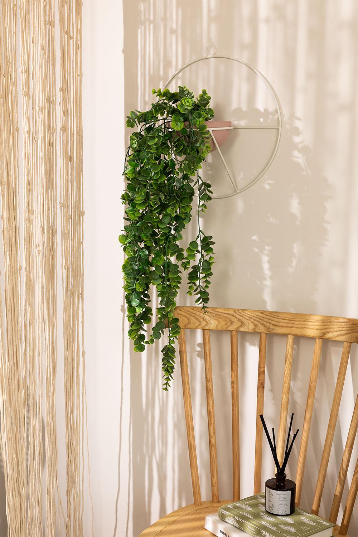 Plantador de Muro Fredd , imagem de galeria 1