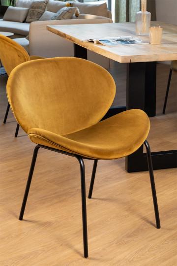 Cadeira de jantar Fior Velvet